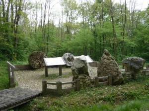 Espace naturel sensible - Le bois de la Barre