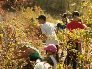 Des enfants observent la nature
