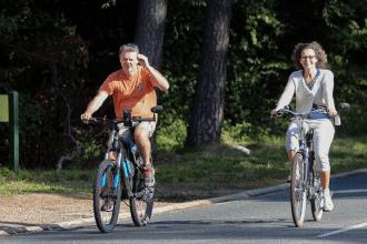 Deux personnes font du vélos en forêt.