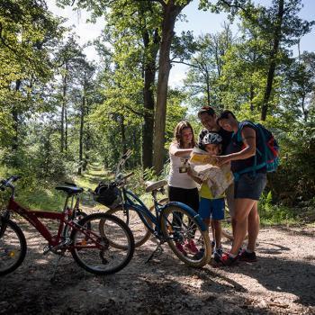 une famille avec des vélos dans une forêt