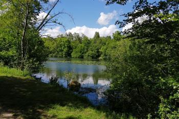 Espace naturel sensible les Basses Godernes au printemps
