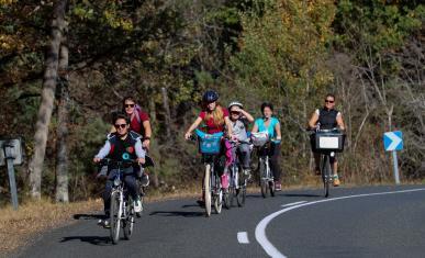 Cyclistes sur une route départementale