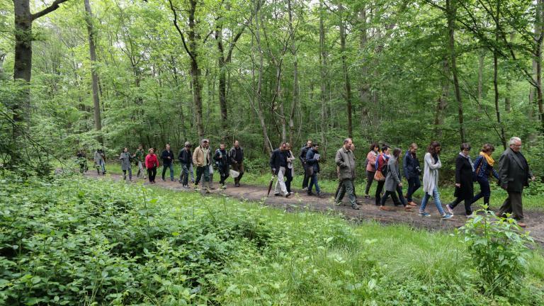 Un groupe de randonneurs sur un chemin de la forêt de Dammarie-Les-Lys